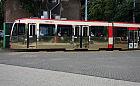 Po Gdańsku jeździ złoty tramwaj