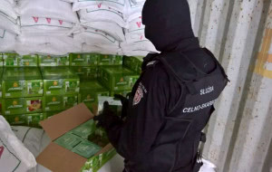 Skonfiskowano ponad 2 tony nielegalnej melasy