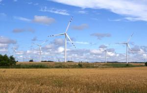 Amerykanie pozywają Energę. Chodzi o 32 mln zł