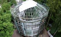 Trwa rozbiórka palmiarni w Parku Oliwskim