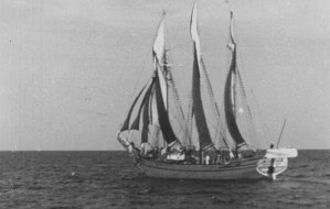 Żeglarz, co szalupą na Gotlandię popłynął