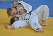 Medale mistrzostw Polski młodzików w judo