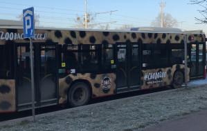Autobus w cętki zaprasza mieszkańców do zoo