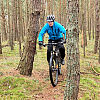 Wąskie, leśne ścieżki na Wyspie Sobieszewskiej