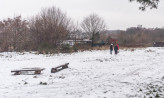 Gdynia zmieni zaniedbane tereny w dzielnicach w polany rekreacyjne