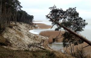 Wędrówka wśród wydm Mierzei Wiślanej