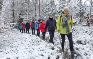 Zimowa wędrówka po Lasach Mirachowskich