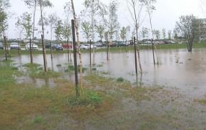 Osiedle Południowe: oczko wodne czy rowy melioracyjne?
