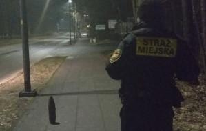 Pocisk artyleryjski na chodniku na Stogach