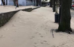 Sopot: wiatr przesypał piasek do Parku Północnego