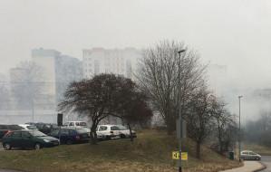 Gdynia zyska dziesięć nowych mierników jakości powietrza