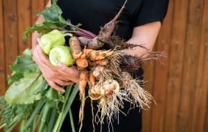 Jedz sezonowo i lokalnie, zamiast ulegać modom