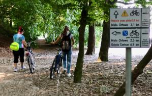 Naprawiona trasa rowerowa na Kolibkach