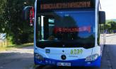 Udekorowane na mundial autobusy budzą kontrowersje