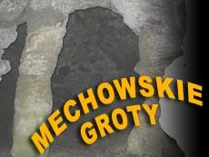 Groty Mechowskie i Puszcza Darżlubska