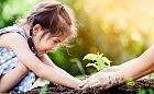 Ekologia dla najmłodszych. Od czego zacząć?