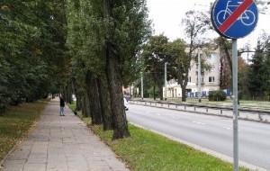 Ślepe drogi rowerowe w Gdyni