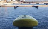 Są już elementy nowej mariny w Gdyni. Będzie gotowa latem