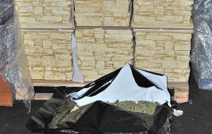 Przed sąd za 80 kg narkotyków w donicach ogrodowych