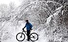 Kaszëbskô Stegna, szlak rowerowy w Gminie Stężyca