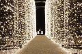 Wyłączona iluminacja w parku Oliwskim