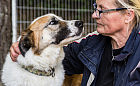 Zaj: wyjątkowy pies szuka opiekuna