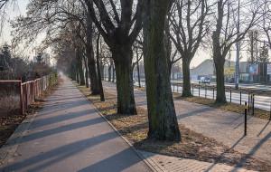Miasto rezygnuje z przebudowy drogi rowerowej we Wrzeszczu