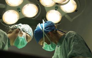 Rezonans magnetyczny w klinice weterynaryjnej