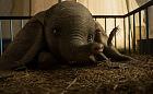 """O słoniu, który fruwał wysoko. Recenzja filmu """"Dumbo"""""""
