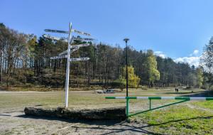 Mieszkańcy Gdyni nie chcą sprzedaży Polanki Redłowskiej