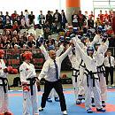 Medale w mistrzostwach świata taekwon-do ITF