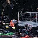 Spór o Park Rady Europy w Gdyni. Zniknęły śmietniki, pojawiły się śmieci