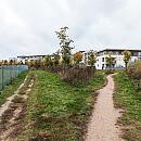 Nowe boisko i alejki spacerowe na Zakoniczynie. Miasto szuka wykonawcy