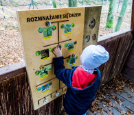 Rodzinna lekcja przyrody w terenie. Zobaczcie, jak zaplanować ciekawy spacer