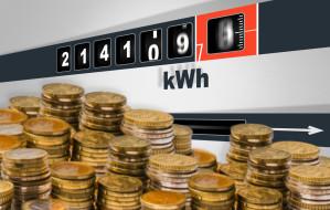 Sprzedawcy prądu wnioskują o podwyżki. Ceny znacznie wzrosną?