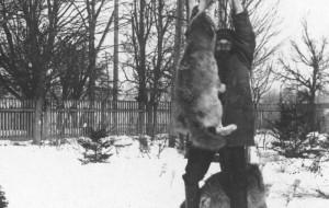 Listopad 1934: Gdy nadchodzą wilki...