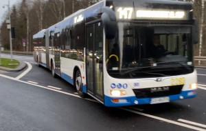 Autobusy jeżdżą już kontrapasem w Gdyni