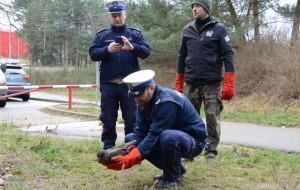 Uratowany przez policjantów myszołów odzyskał wolność