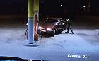 Groteskowa kradzież paliwa na stacji pod Gdańskiem