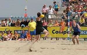 Szczypiorniak na piasku