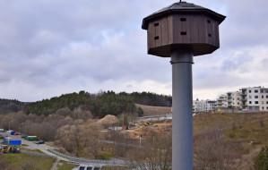 Wieża na Karwinach gotowa na przylot jerzyków