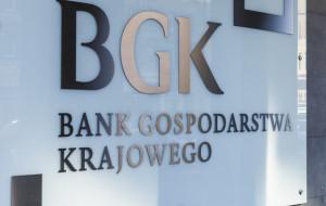 Pakiet pomocowy dla firm. Bank Gospodarstwa Krajowego wspiera polskich przedsiębiorców