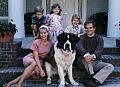 Najlepsze filmy z psami w roli głównej