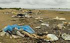 """Plaża w rezerwacie przyrody """"Mewia Łacha"""" pełna śmieci"""