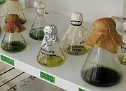 Chcemy centrum biotechnologii za 45 mln euro