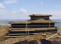 Wielcy gdańszczanie z piasku na plaży