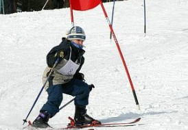 Biegi i narciarstwo w ofercie