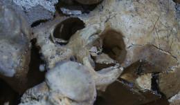 Zobacz podziemny refektarz pod Placem Dominikańskim