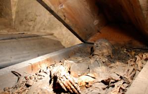 Zajrzyj do krypty z jedyną gdańską mumią