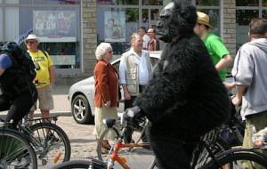 Po rowerowe nauki do Gdańska?